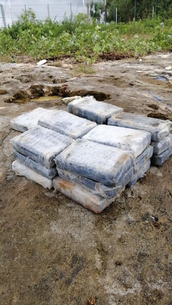 SEMAR asegura droga en inmediaciones de Marina FONATUR