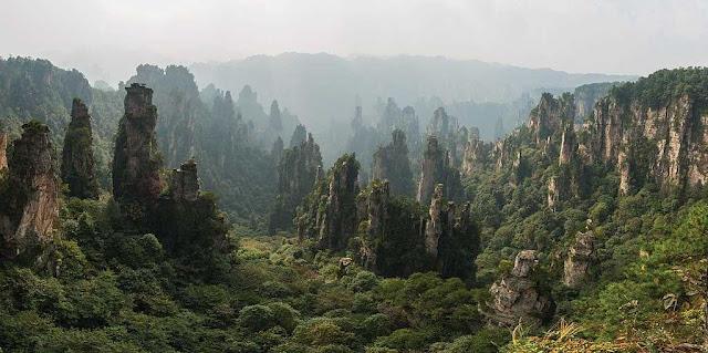 hutan lindung Zhangjiajie
