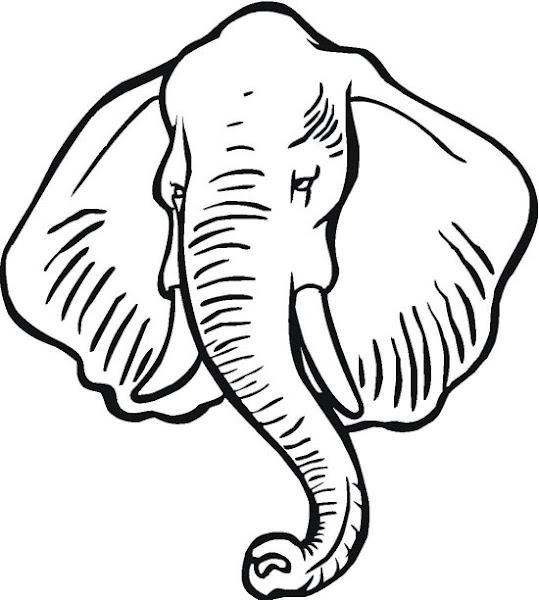 Colorear detalles de la trompa de un elefante