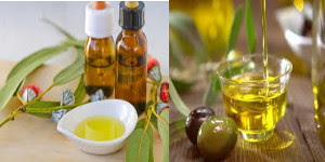 How to treat hives with eucalyptus oil and olive oil
