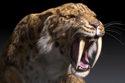 Ini Dia 5 Kucing Raksasa Yang Hidup Di Zaman Prasejarah ( Ngeri Juga Ya Ternyata )