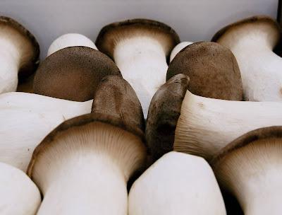 Mushroom wholesale market in Hyderabad