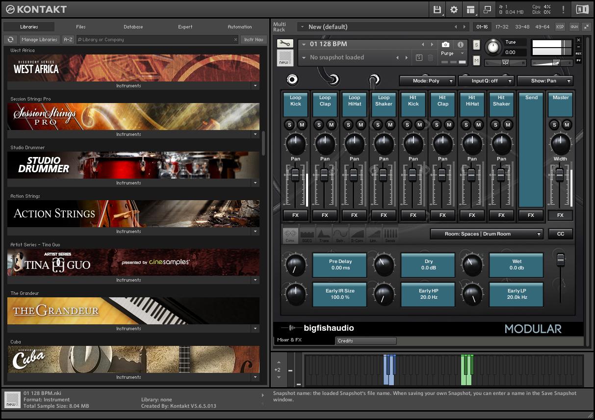 Big Fish Audio - Modular Analog Tech House KONTAKT Library