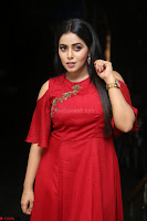 Poorna in Maroon Dress at Rakshasi movie Press meet Cute Pics ~  Exclusive 112.JPG