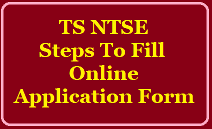 Steps To Fill TS NTSE Online Application Form for the year 2019 /2019/07/steps-to-fill-ts-ntse-online-application-form-for-the-year-2019-www.bse.telangana.gov.in.html