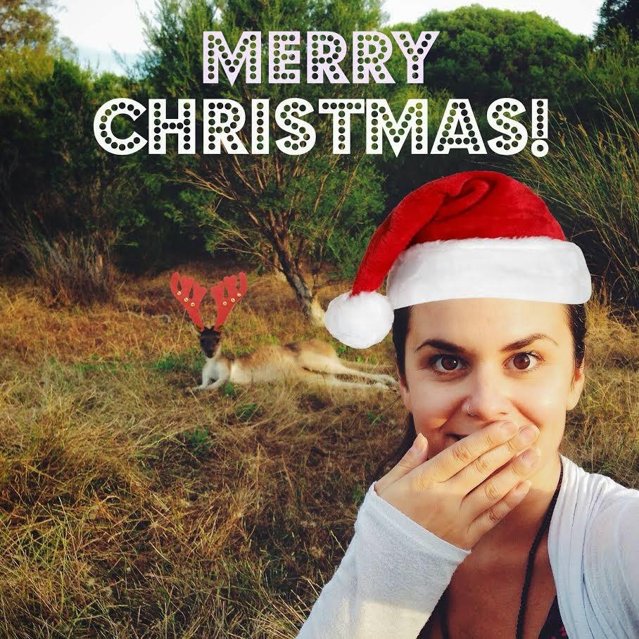 Buon Natale con i canguri-renna - foto di Elisa Chisana Hoshi
