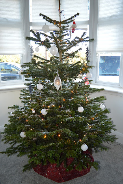 Christmas tree in bay window