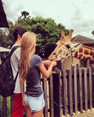 foto tumblr en pareja en zoo