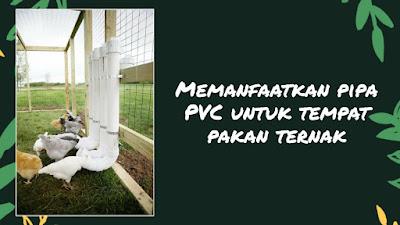 kerajinan dari paralon kreasi dari pipa paralon kerajinan dari paralon besar cara mengukir pipa pvc kerajinan dari pipa aluminium cara membuat kerajinan pipa paralon bakar sebutkan karya kerajinan limbah dari pipa pvc pagar dari pipa pvc