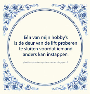 nederlandse quotes om te delen