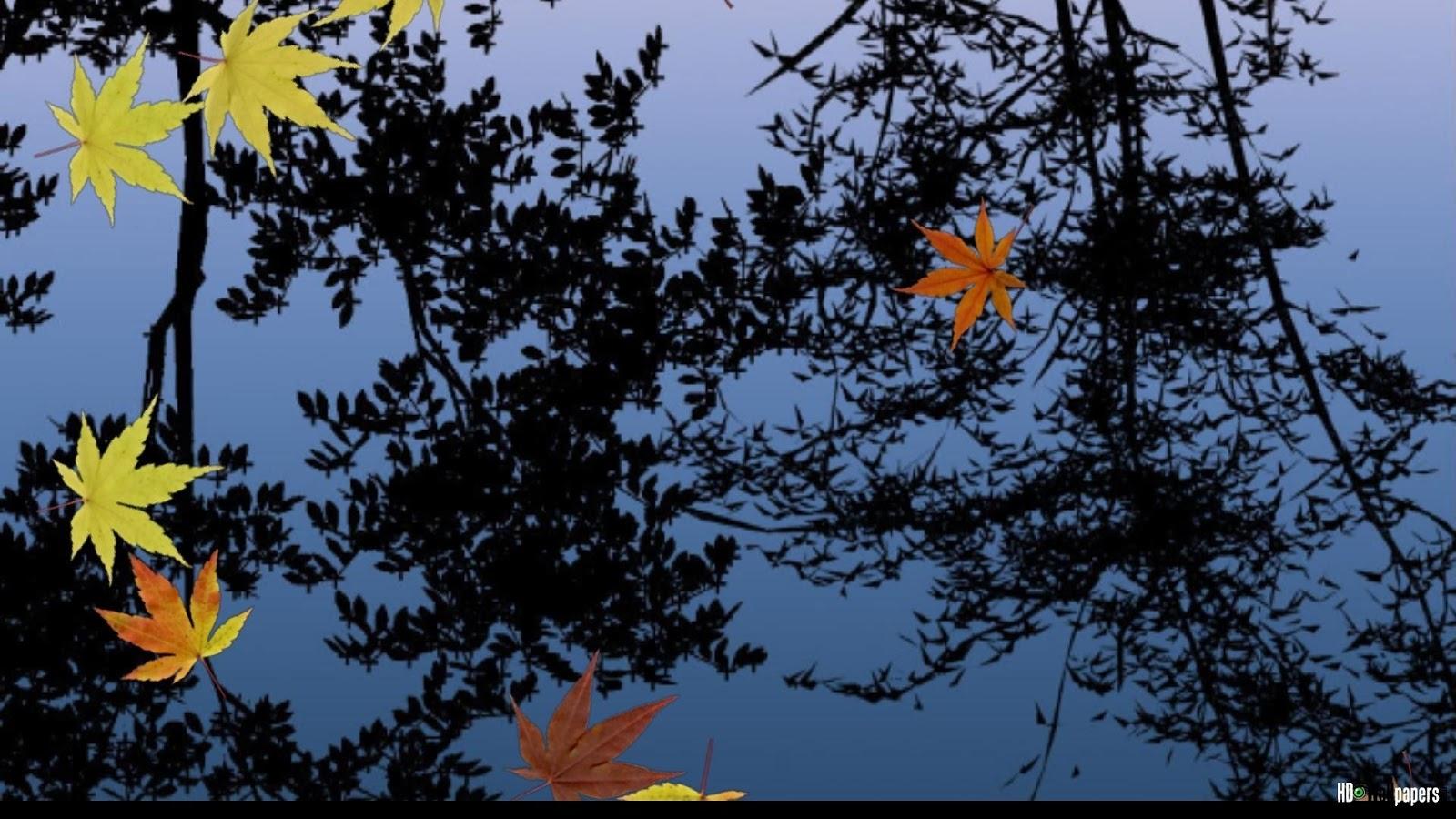 free live desktop wallpaper - photo #24