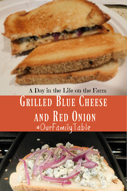 Grilled Blue Cheese and Onion Sandwich