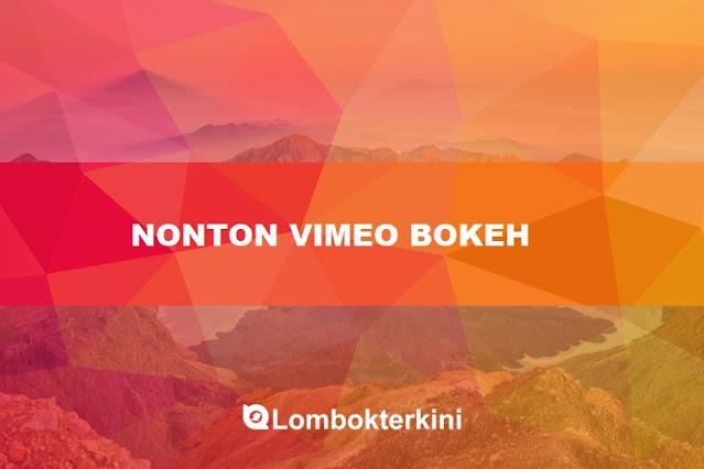 Nonton Bokeh Vimeo Bokeh Museum