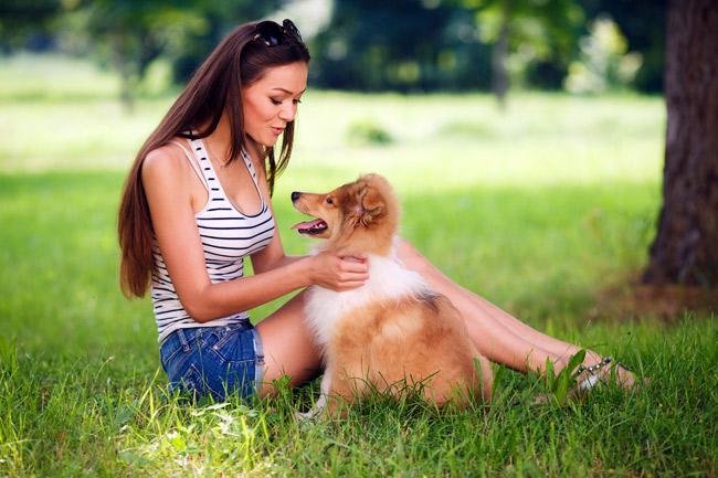 Najlepsze preparaty na kleszcze dla psa