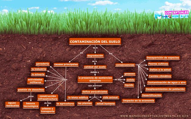 Mapa conceptual de la contaminación del suelo, sus causas y efectos en la salud humana