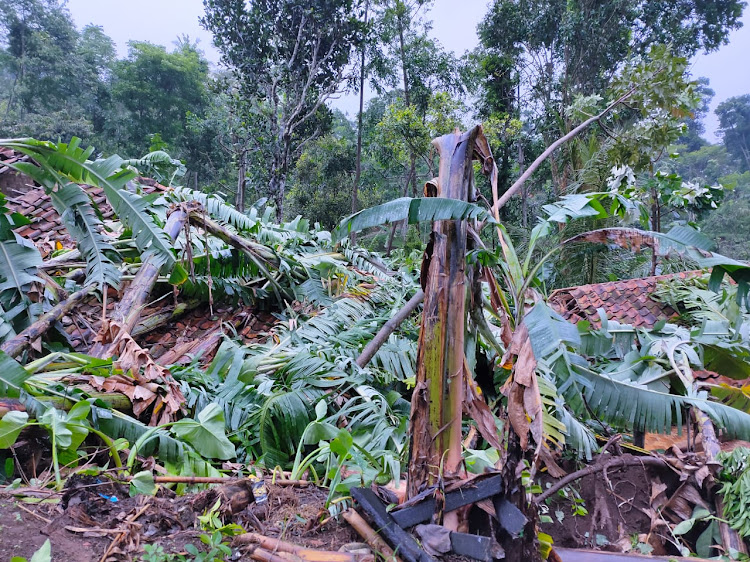 Puting Beliung Memporak Porandakan Rumah Warga Desa Tugu Bandung, Kabandungan