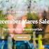 Iniziano a Newmarket le attesissime Tattersalls December Mares Sale, l'asta di fattrici più importante. Ecco il live