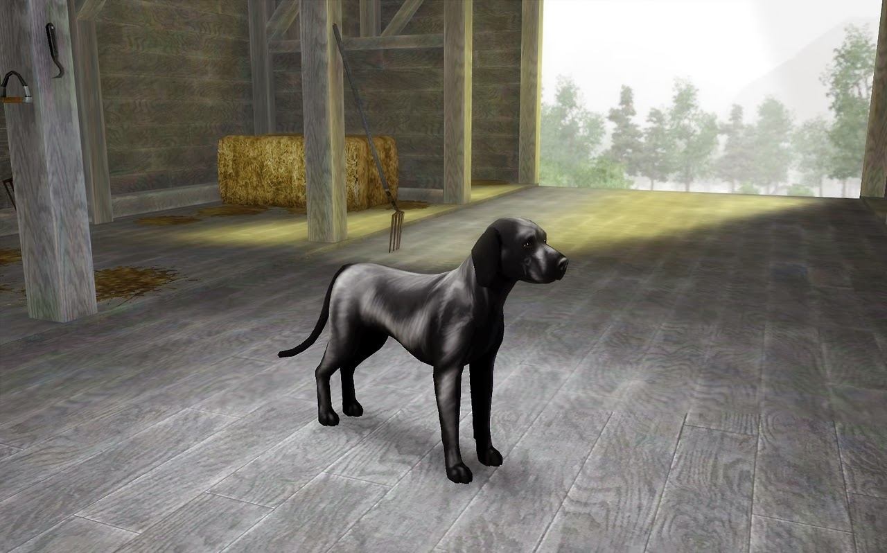 Bathroom Decor Pinterest My Sims 3 Blog: Dog Shine Marking By Silverdragonestate