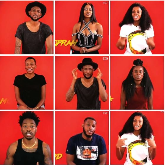 #BBNaija: Meet The 2019 Big Brother Naija Housemates