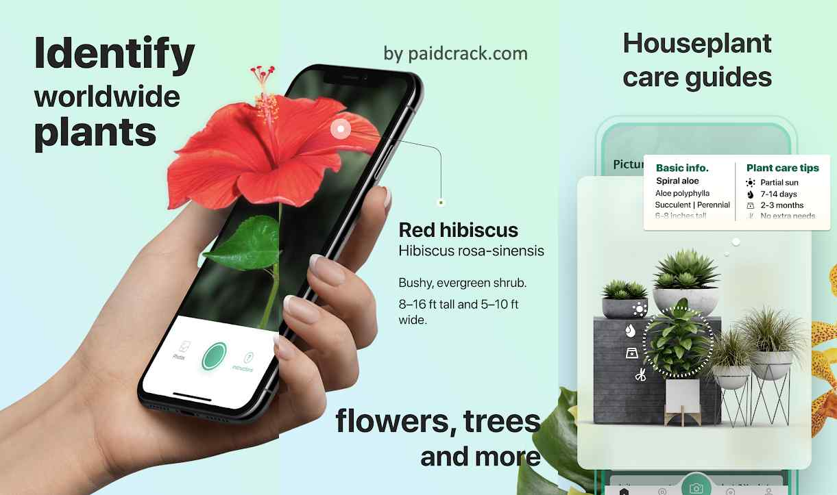 PictureThis Identify Plant, Flower, Weed and More Premium Mod Apk 2.10.1