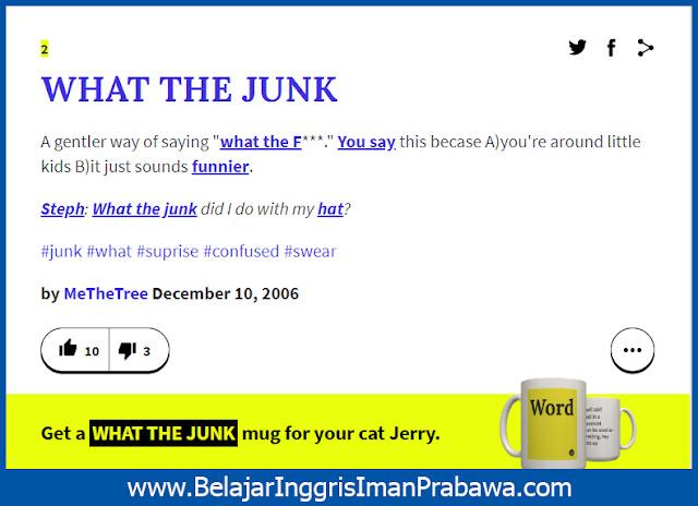 Arti What the Junk Kamus Urban Dictionary