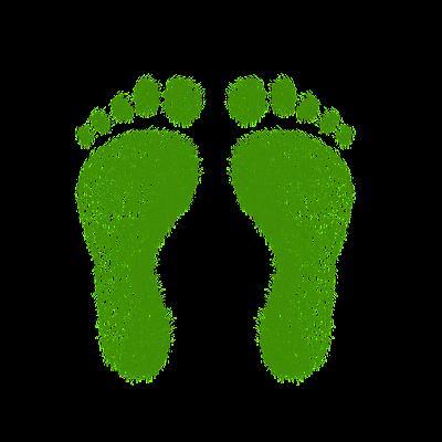 KOMITMEN PENURUNAN CARBON FOOTPRINT: AKSI POLA HIDUP EKOSENTRISME