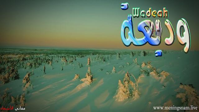 معنى اسم وديعة وصفات حاملة هذا الاسم Wadeah,