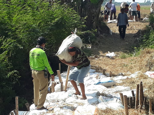Demi Dapatkan Pasokan Air Ke Sawah Dan Tak Gagal Panen, Para Petani Berinisiatif Membendung Sungai