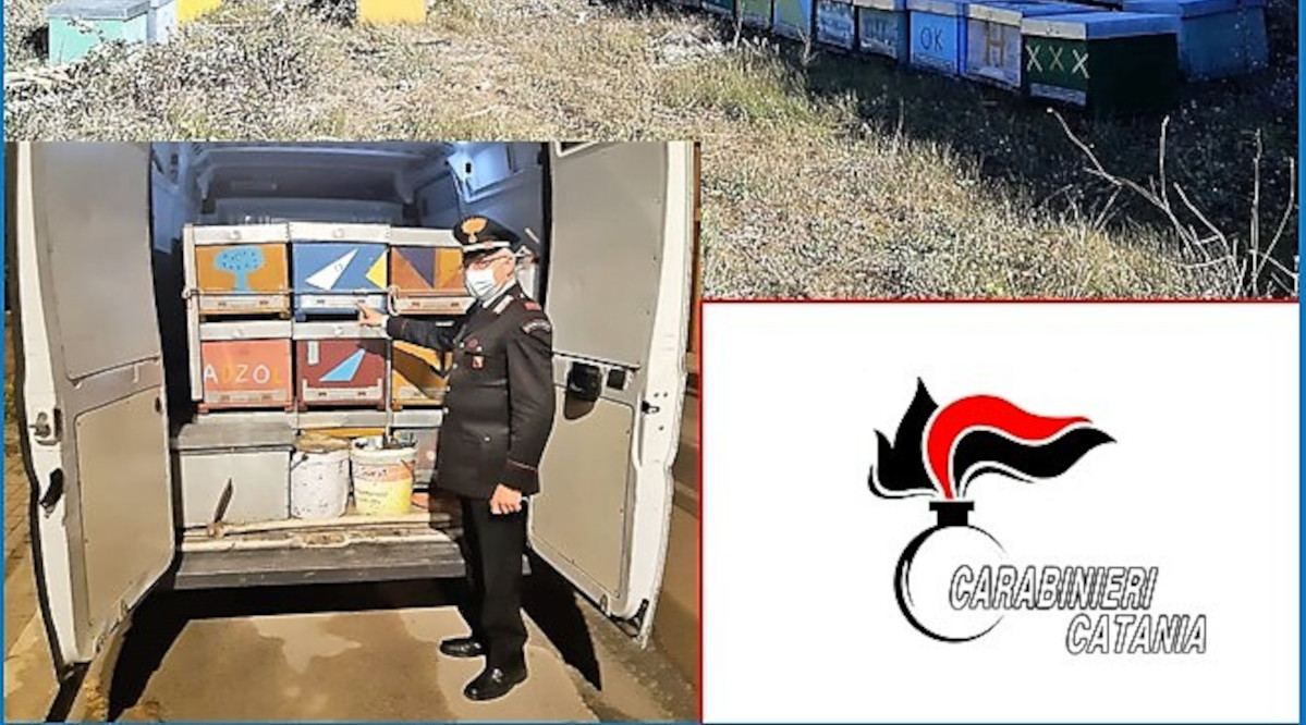 arnie recuperate dai carabinieri