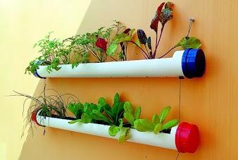 Aprenda a fazer uma horta vertical passo a passo