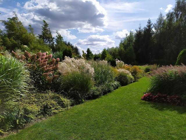 rabata bylinowa, trawy w ogrodzie