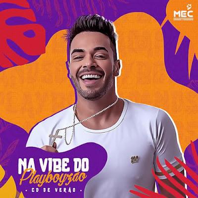 Andson Mendonça - Na Vibe do Playboyzão - Promocional de Verão - 2020