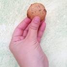 http://www.patypeando.com/2017/11/proyecto-galletas-caseras-galletas-de-espelta.html