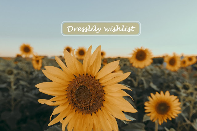 dresslily wishlist, višlist, wish lista, wish list, fashion, suradnja, collaboration, blogger, instablogger
