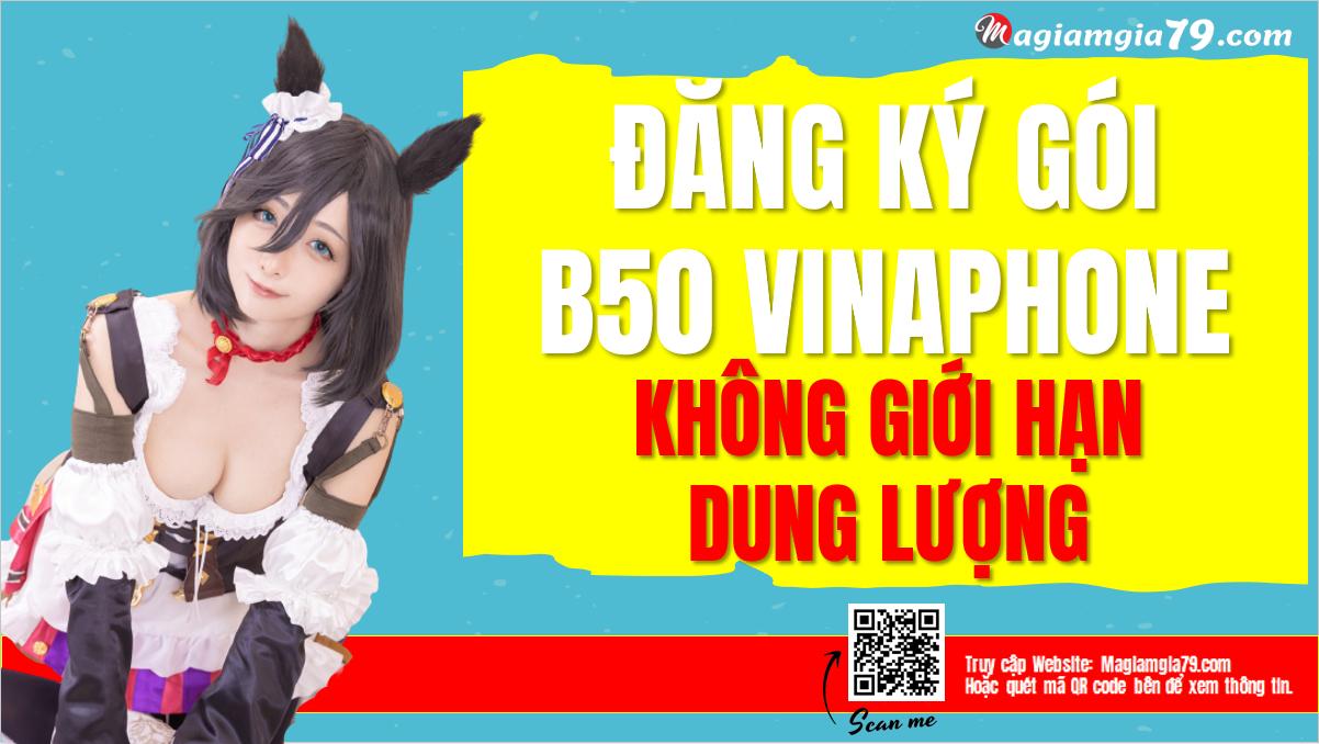 Đăng ký gói B50 Vinaphone
