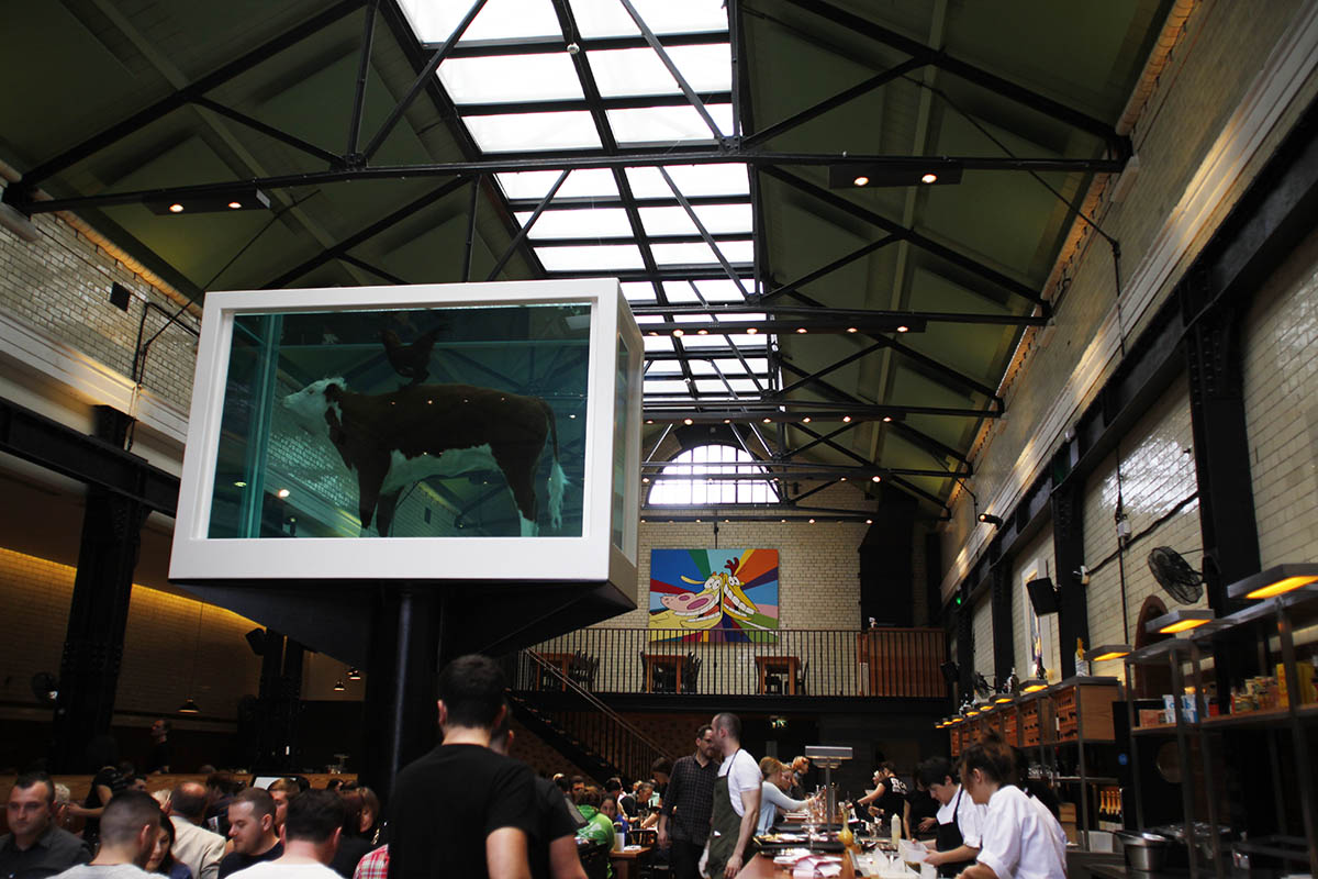 tramshed bull