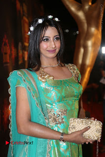 Actress Sanjjanaa Stills in Green Long Dress at Gemini TV Puraskaralu 2016 Event  0018.JPG