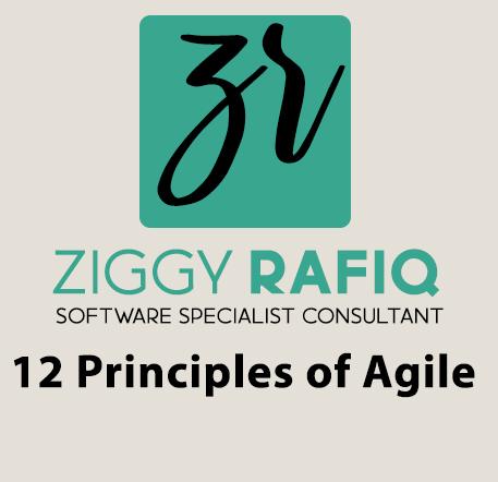 Ziggy Rafiq Blog Post on 12 Principles of Agile