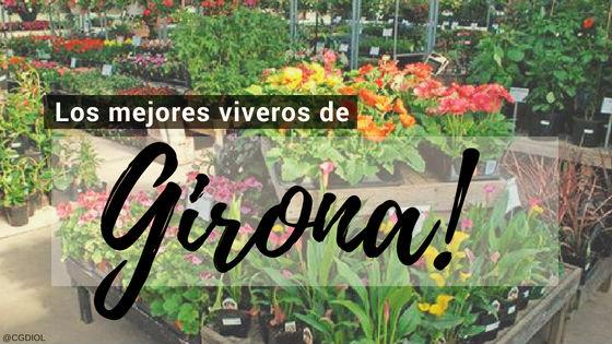 Comprar plantas online en Gerona