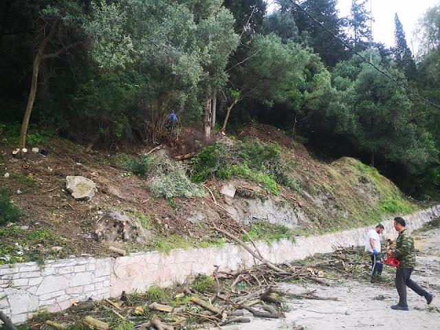 Ξελόγγιασμα, κοπή επικίνδυνων και ξεραμένων δέντρων, καθαρισμός από συσσώρευση σκουπιδιών.