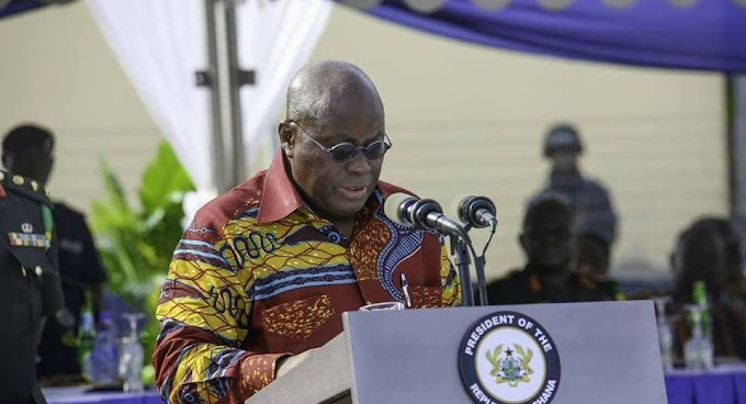 Akufo-Addo responds to critics of 'elephant size' government