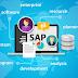Pengertian Tentang SAP | Download SAP Free | SAP Kelebihan