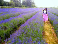 http://pridenstyle.blogspot.co.uk/2014/06/mayfield-lavender-farm.html