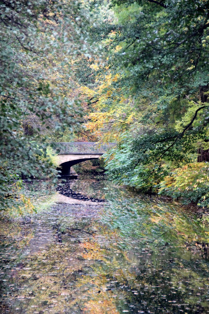 Autumn colours. Foliage. Bridge