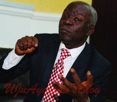 NDDC Interim Committee Is Illegal, Actions Open To Litigation — Falana, SAN