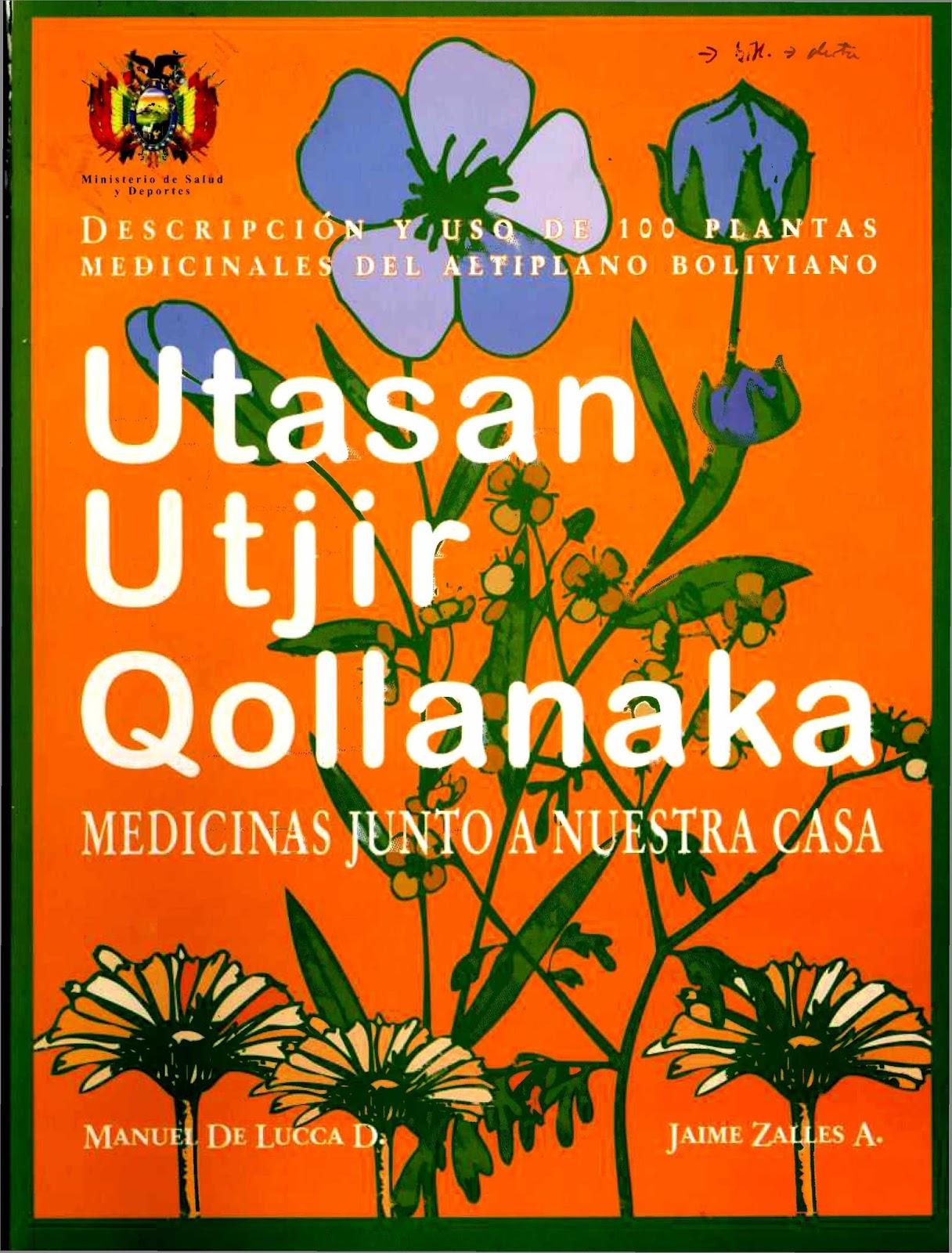 Utasan utjir qollanaka medicinas junto a nuestra casa