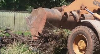 Operação de limpeza da NOVACAP para Lago Sul e Jardim Botânico