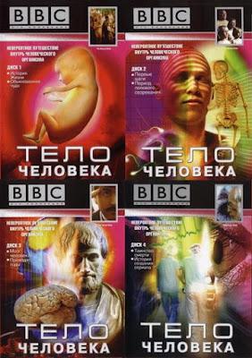 BBC: Тело человека / BBC: The Human Body. 1998.
