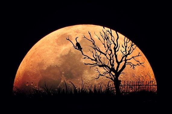 怪しげな月