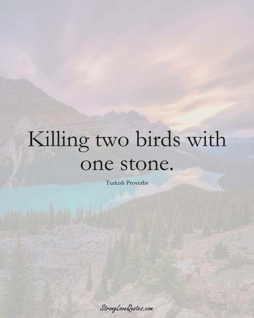 Killing two birds with one stone. (Turkish Sayings);  #MiddleEasternSayings